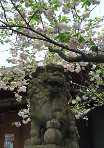 DSC01517香取神社のサッカー.jpg