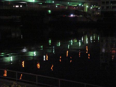 DSC08976夜の橋1.jpg