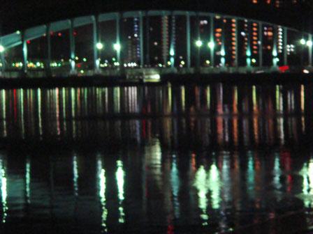 DSC08979夜の橋2.jpg